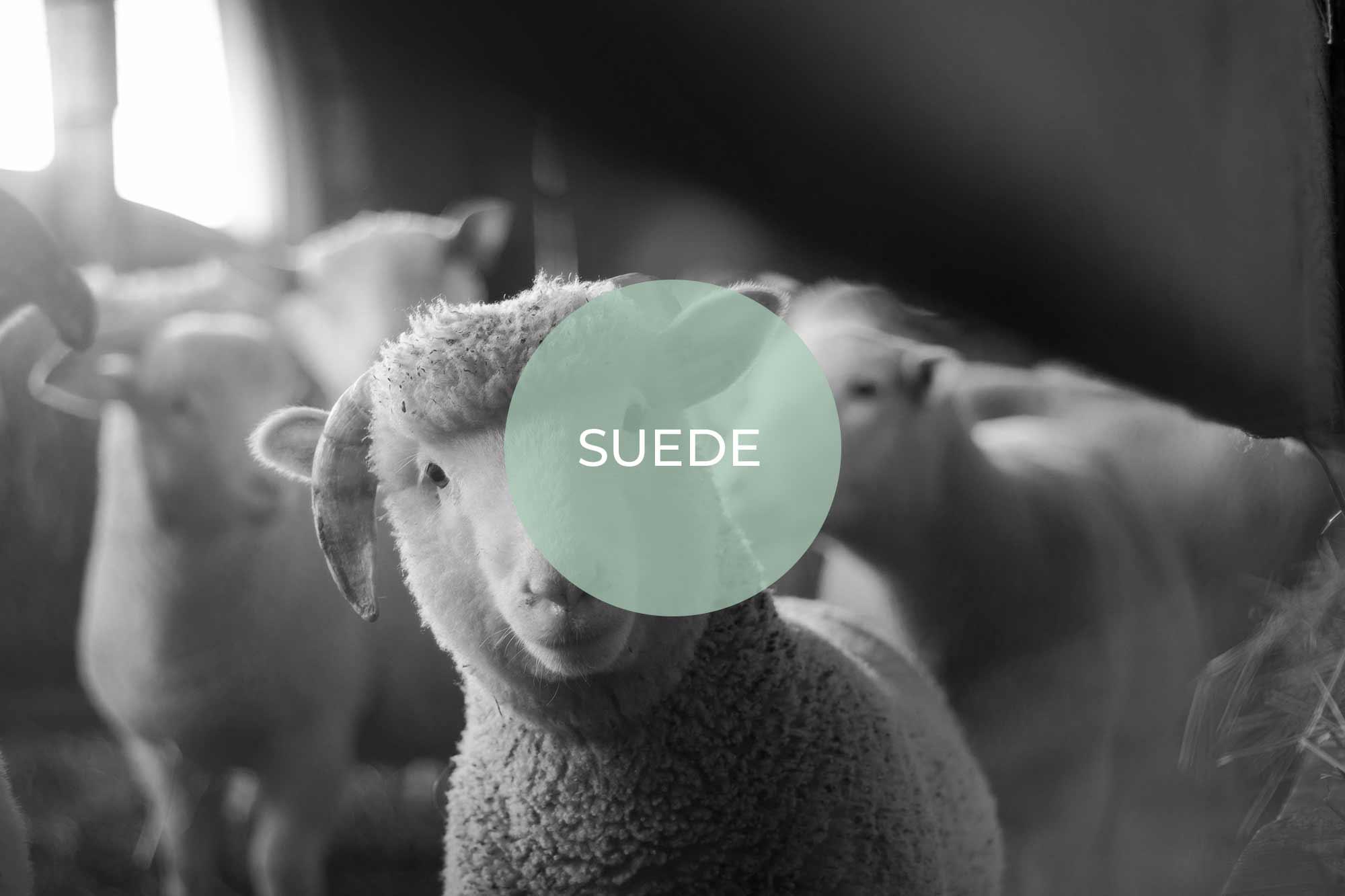 suede its vegan made